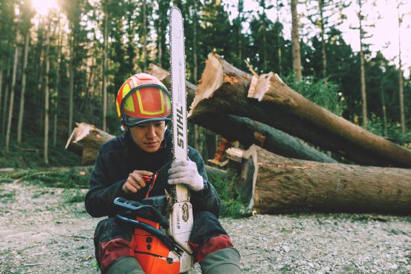 森林組合で働く様子