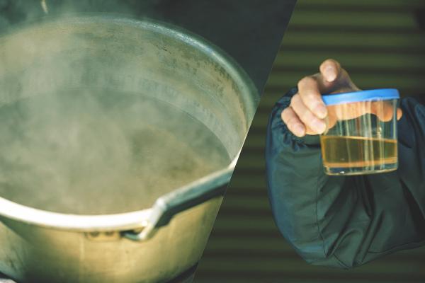 樹液を鍋で煮詰めると、美しいメープルシロップに